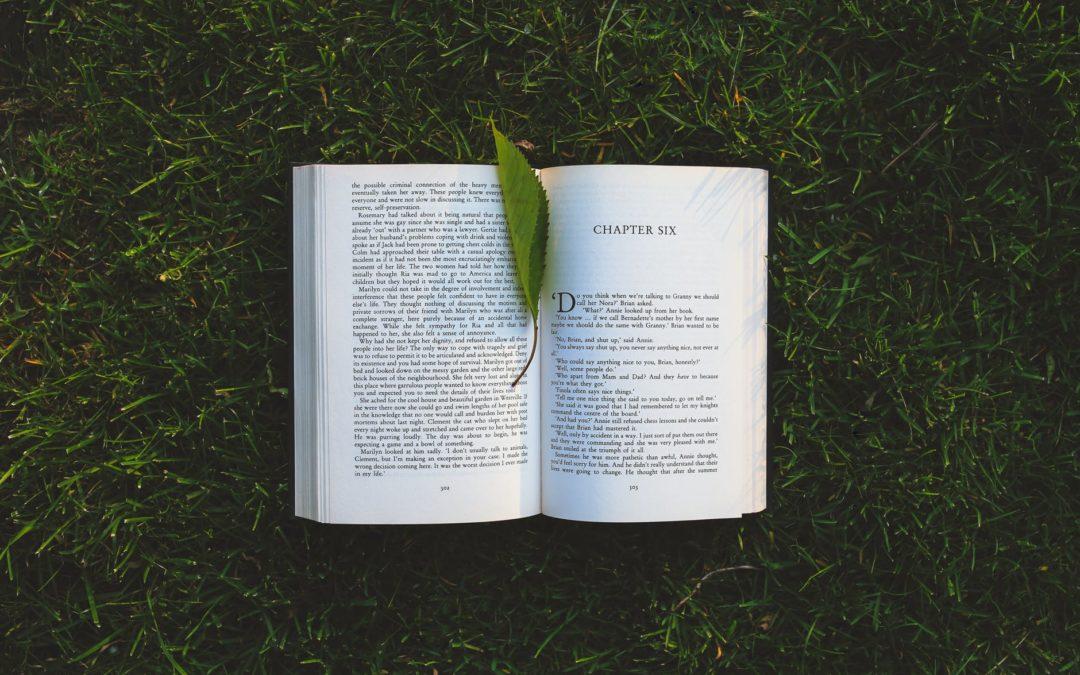 Il patto di ingaggio relazionale: tra Letteratura e Formazione