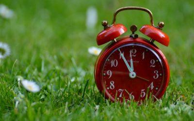 Bioritmo personale e produttività: conoscersi per performare al meglio